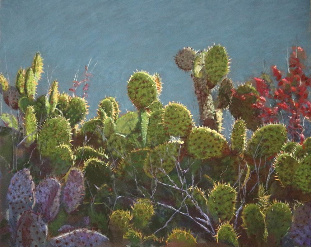 """Newport Bay Cacti"" by Lori White"