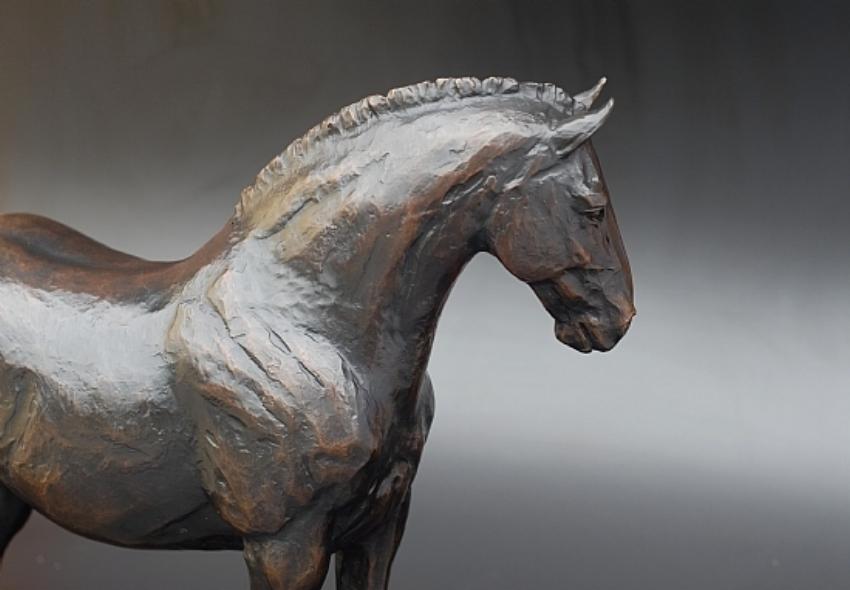 """""""Ira's Horse"""" by Tucker Bailey"""