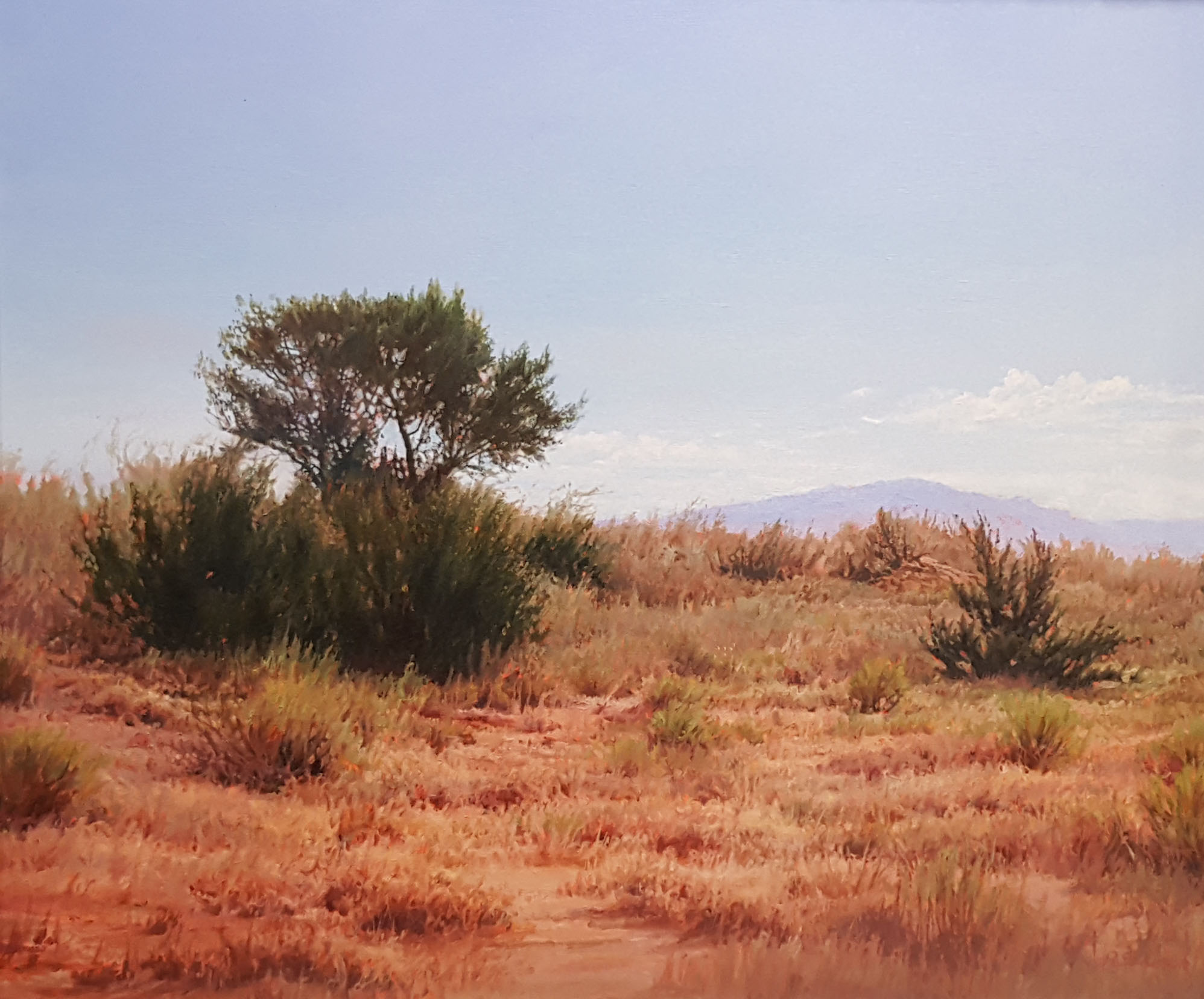 """Distant Sandia"" by Richard Sedlack"