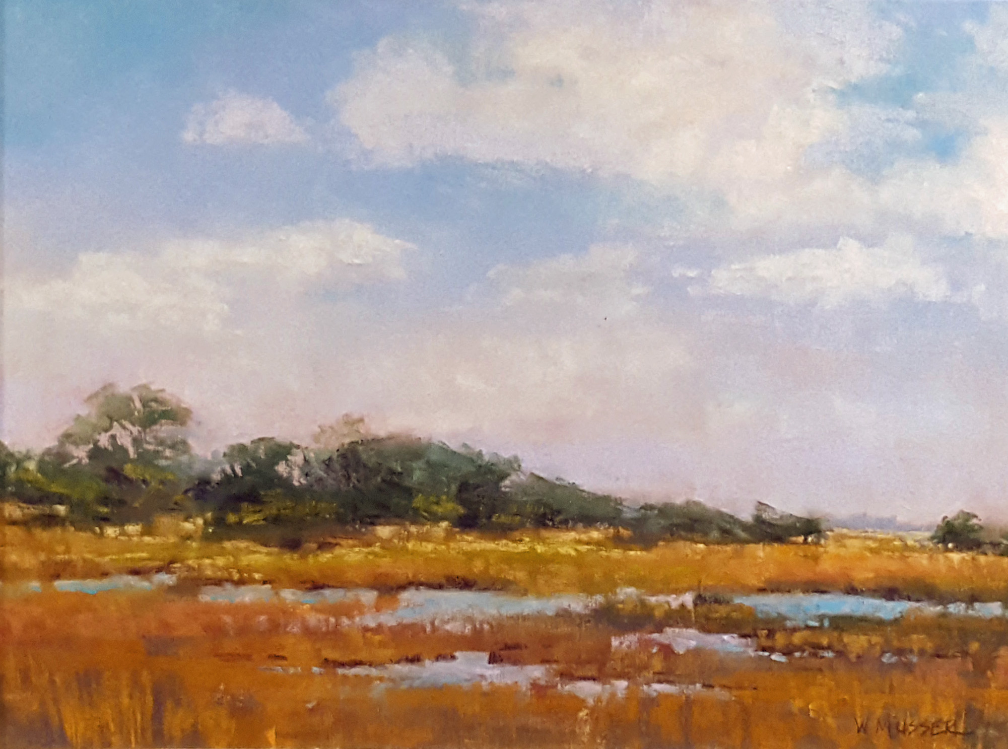 """Enchanted Marshland"" by Wendy Musser"