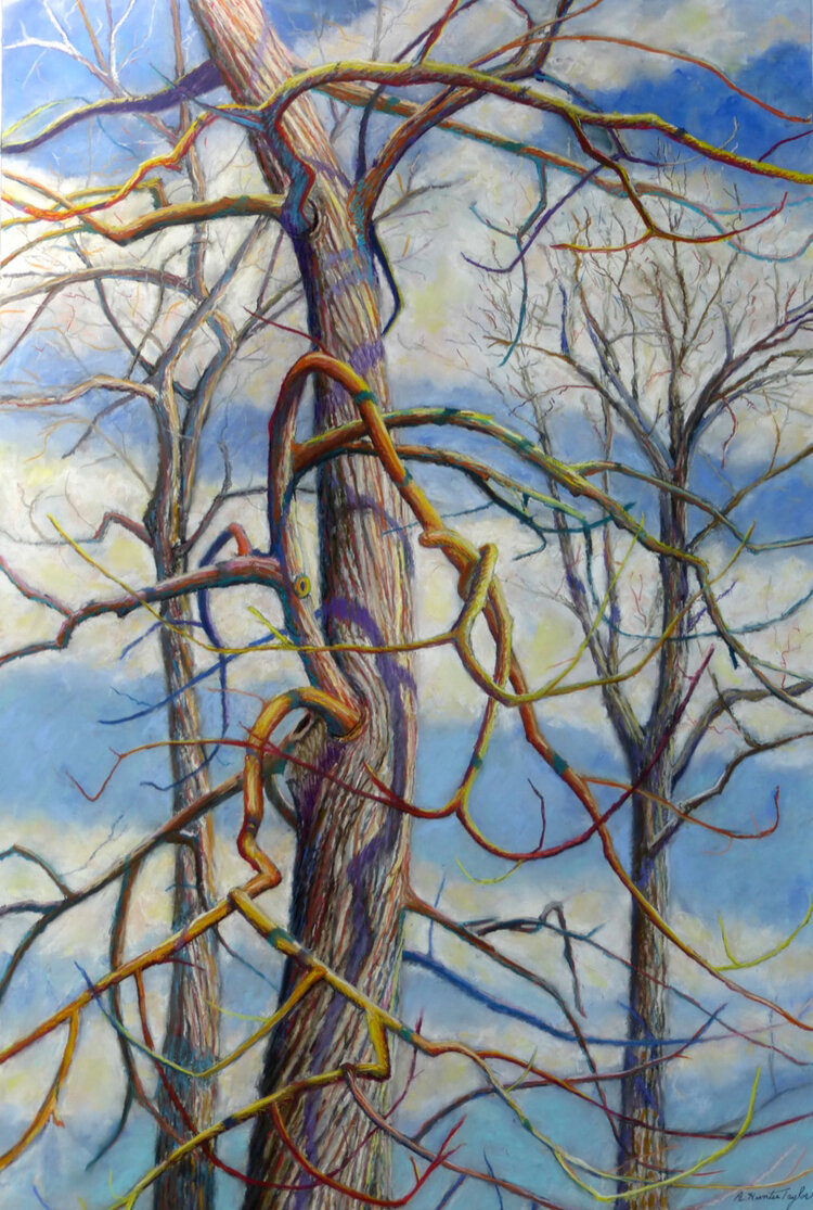 """Branching Out"" by Hunter Taylor"