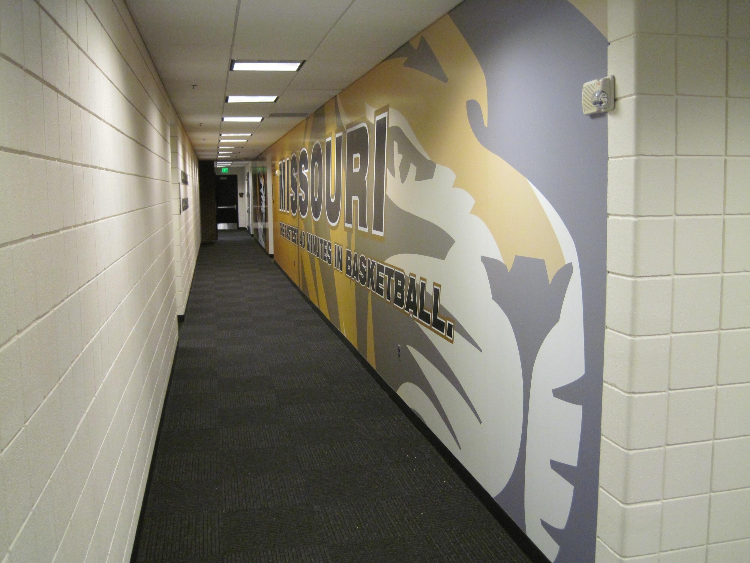 3M 180-C Wall Mural