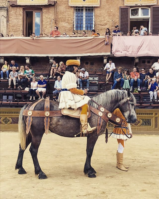 The Famous Medieval Horse races in Siena - 🐎🇮🇹 #paliosiena #medieval #toscano