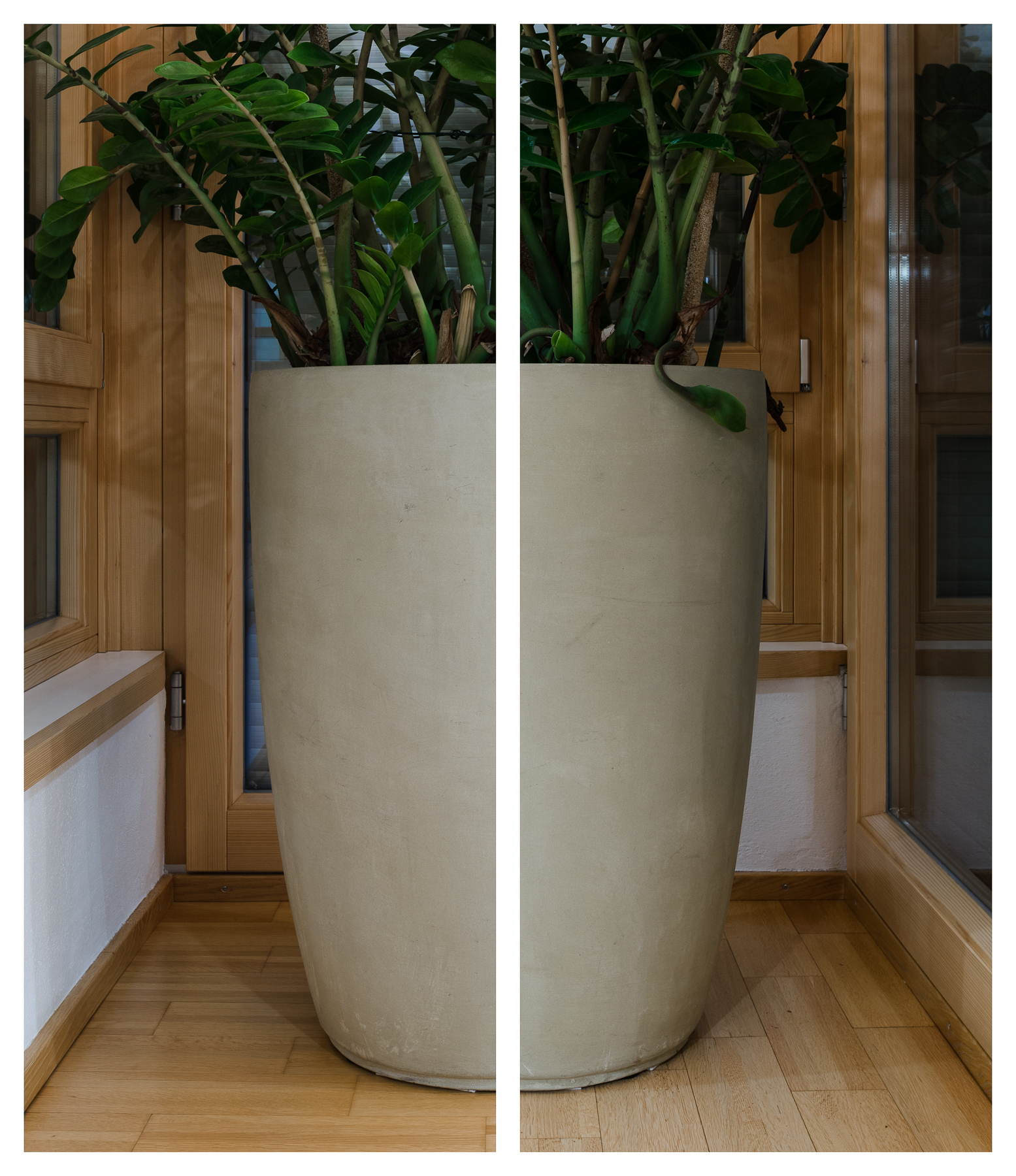 Zimmerpflanze, 2017 Inkjet-Pigmentdruck 2-teilig zu je 125,5 × 52,5 cm
