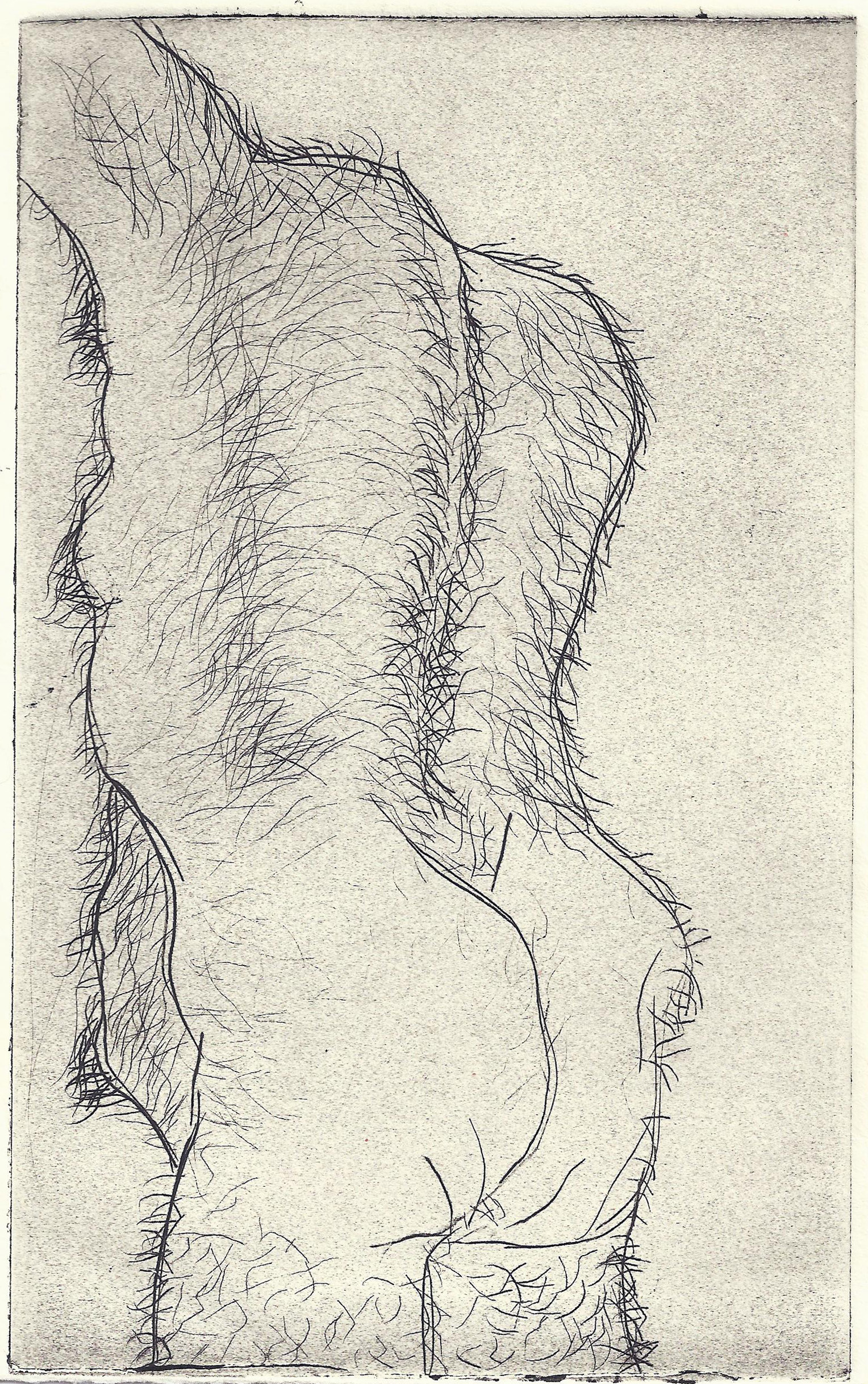 "Hairy Man, 2011 (Intaglio on komatex 5""x7.5"")"