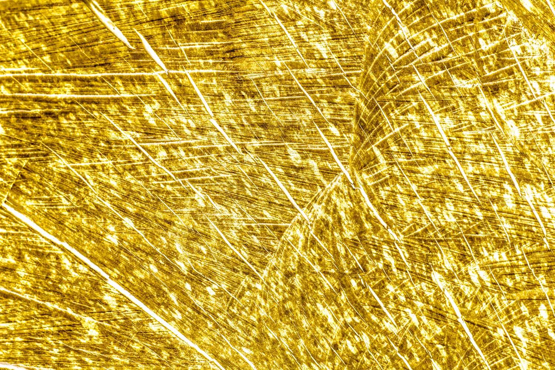bushy_jewels_18_gold_1500.jpg