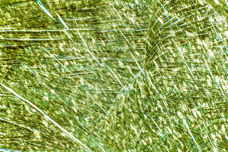 bushy_jewels_18_emerald_1500.jpg