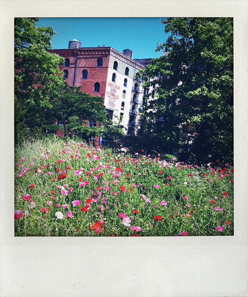 Manhattan-Diary-Polaroid-Fotografie-Chelsea-edition-wagner1972.jpg