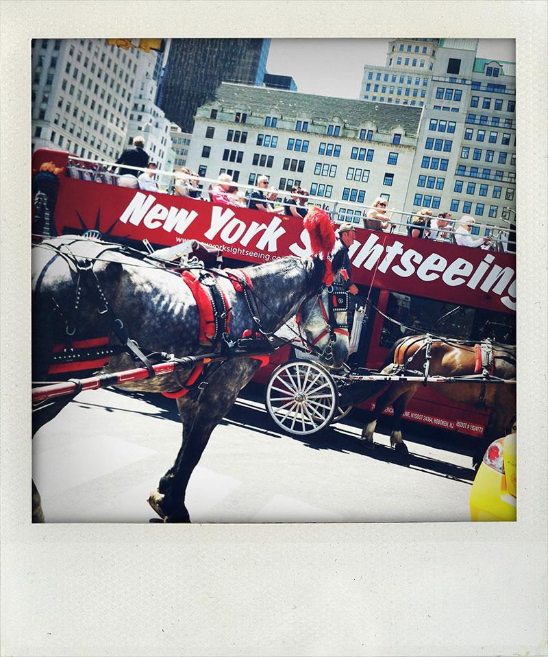 Manhattan-Diary-Polaroid-Fotografie-Grand-Army-Plaza-edition-wagner1972.jpg