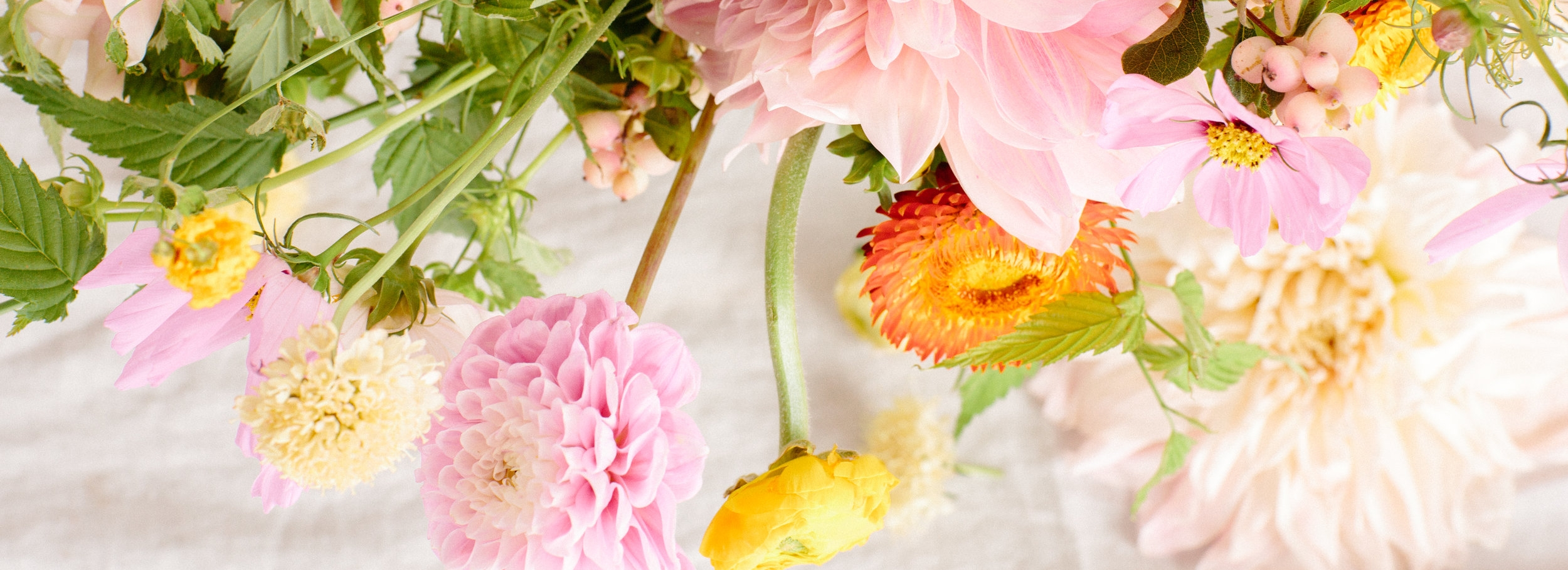 floral styling by wild muse floral,photography by ryan pavlovich