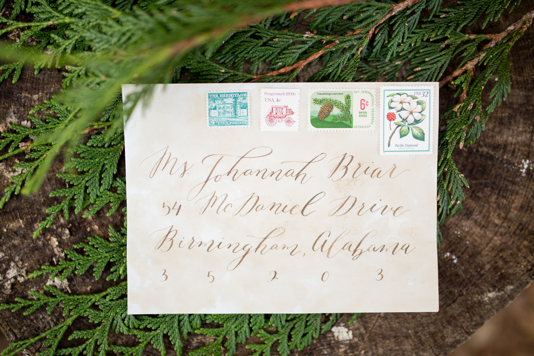 Organic Calligraphy Envelope Addressing