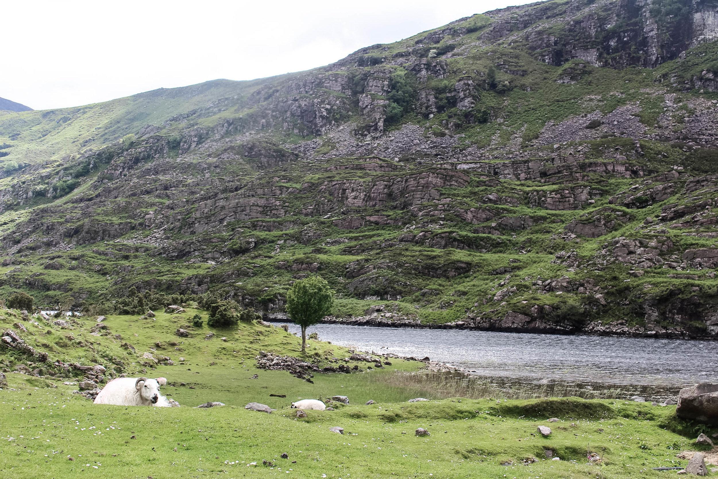 Gap of Dunloe - Killarney, Ireland - Things to do - True North Paper Co. Blog