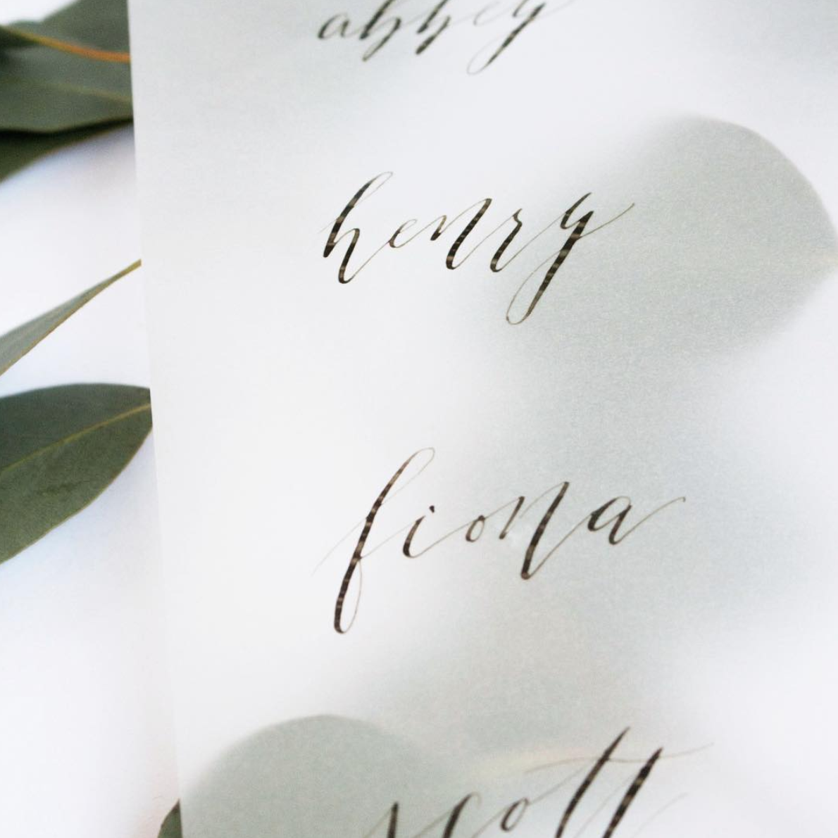 ModernCalligraphy-TrueNorthPaperCo.png