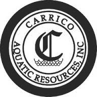 CARRICO.png