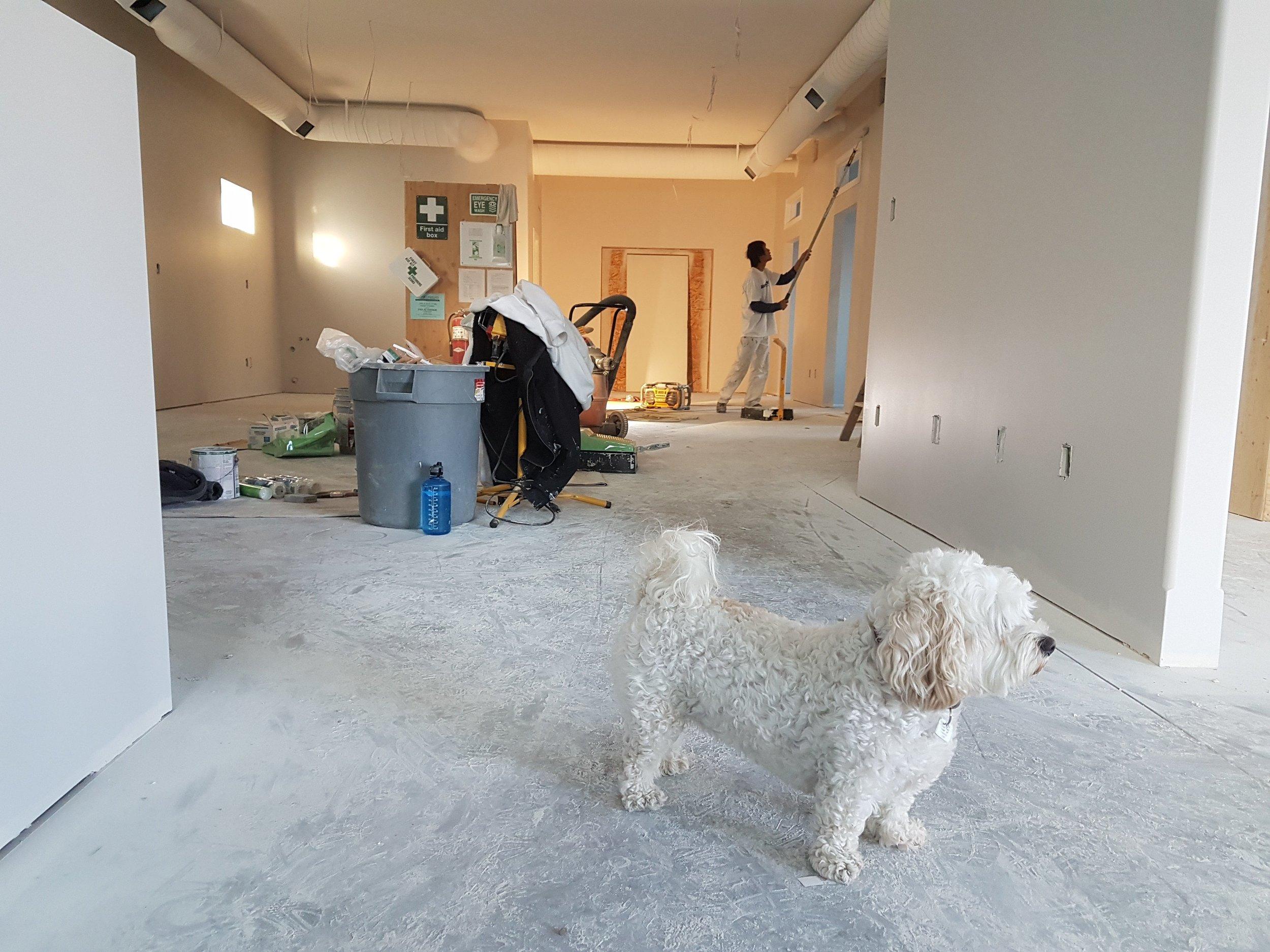 apartment-architecture-blur-735319-min.jpg