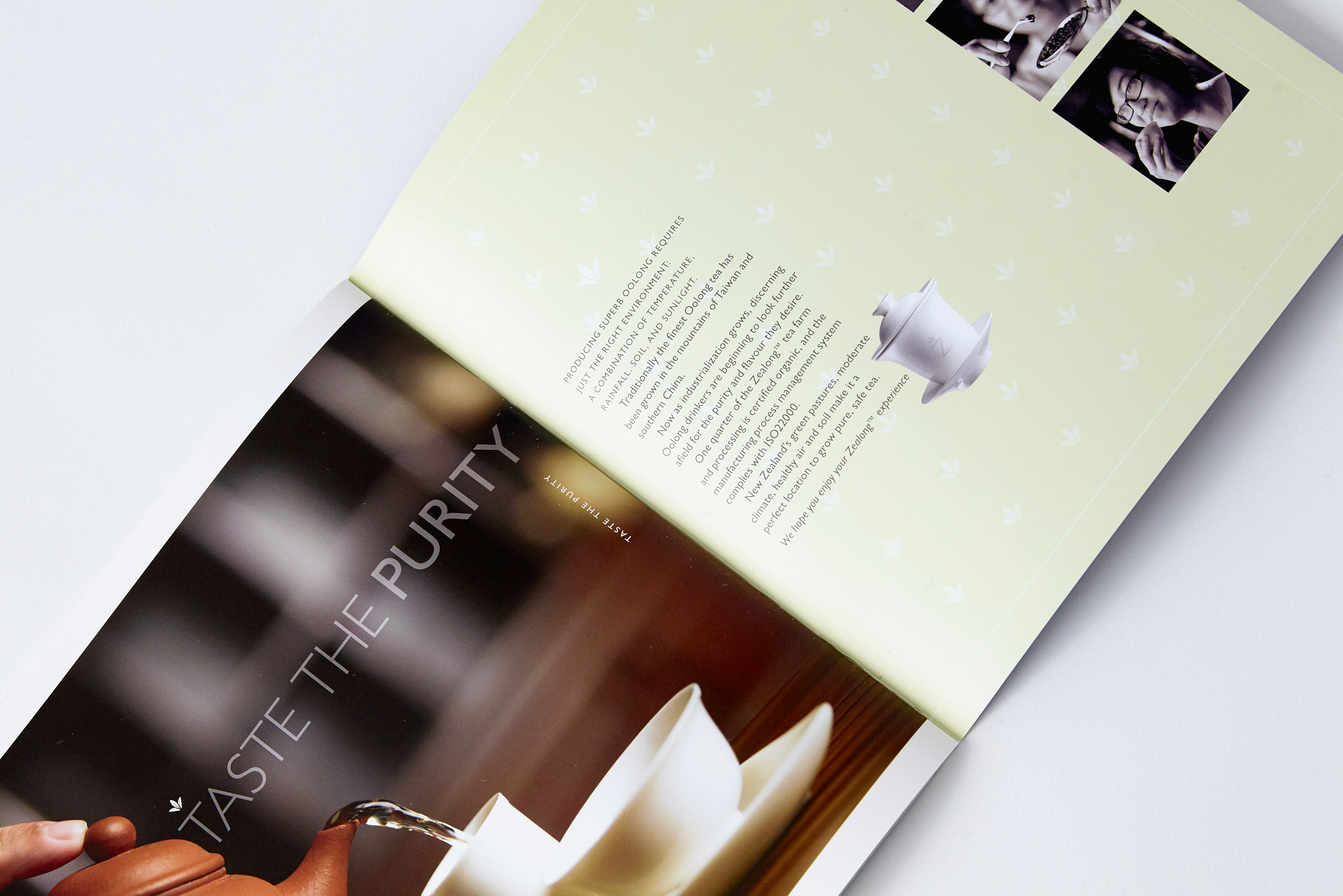 Corporate brochure for Oolong Tea company