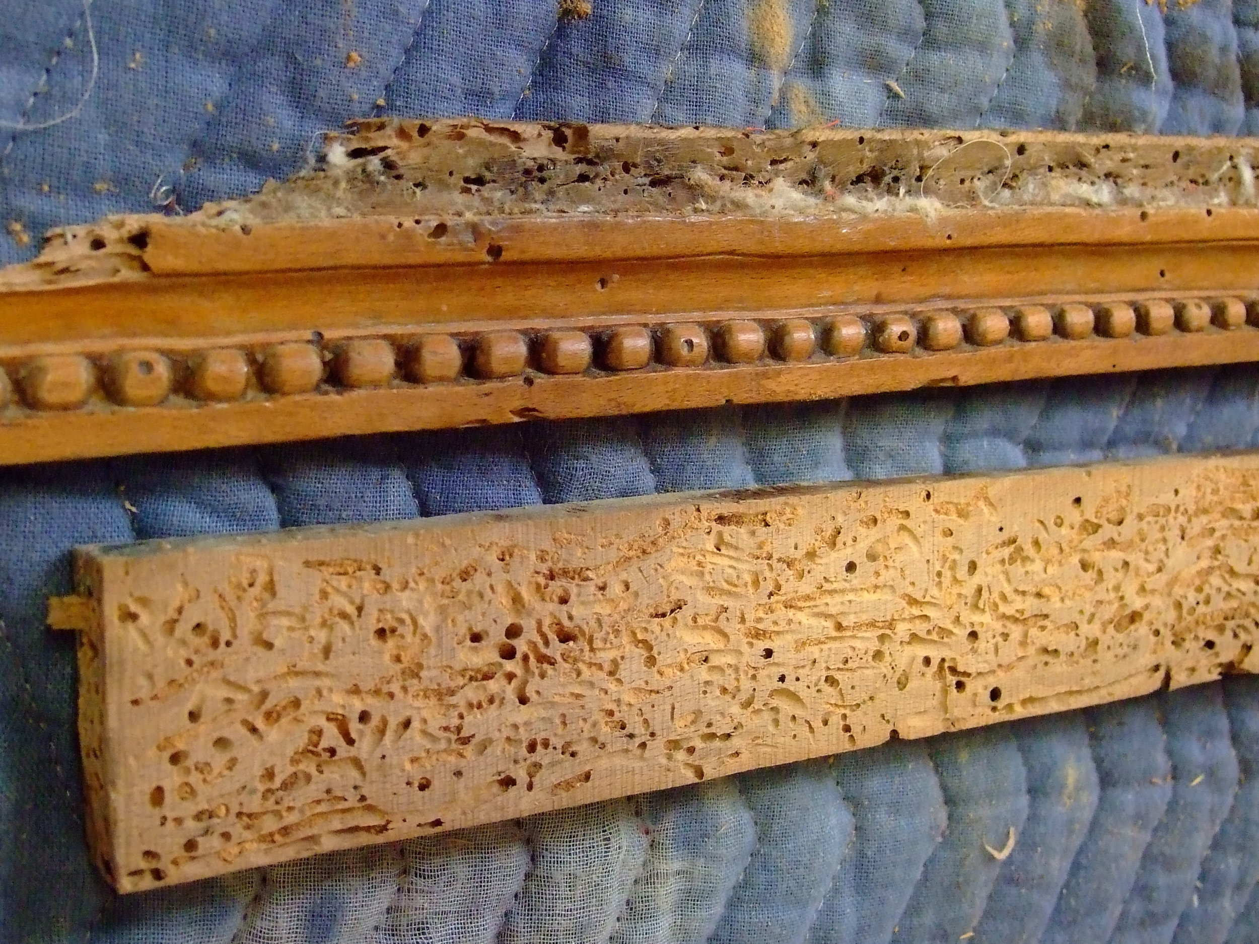 This shows the extent of damage to the rails. The piece above was sawn off so the I could glue it to a new rail later.