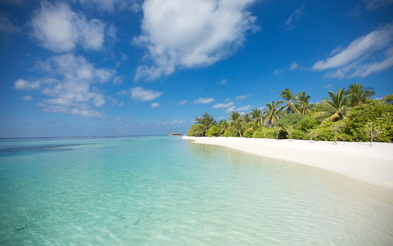 Maldives beach1.jpg