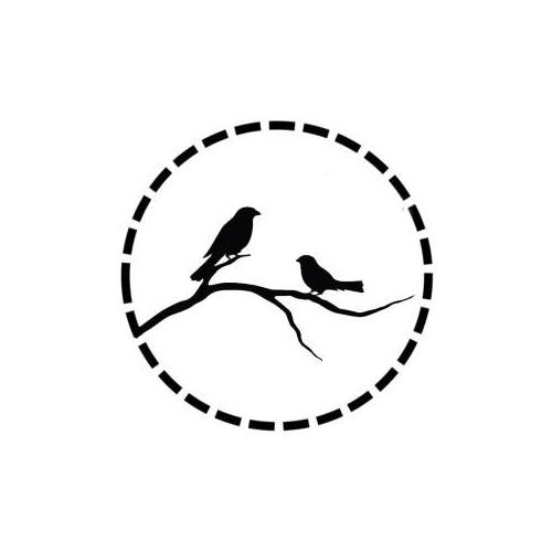 sabine sparrow.jpg