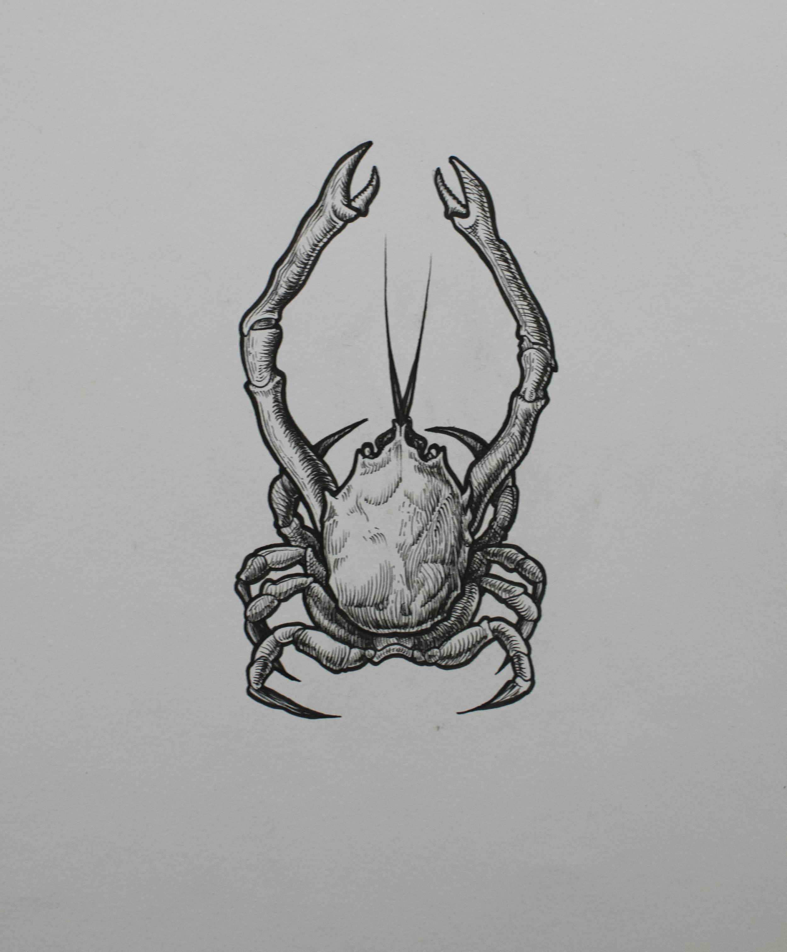 Desenho original assinado  Nanquim sobre papel Fabriano  Acid free  21 x 30 cm