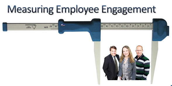 Measuring Employee Engagement