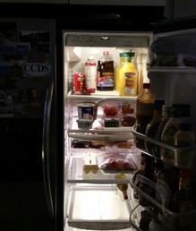 LED Refrigerator