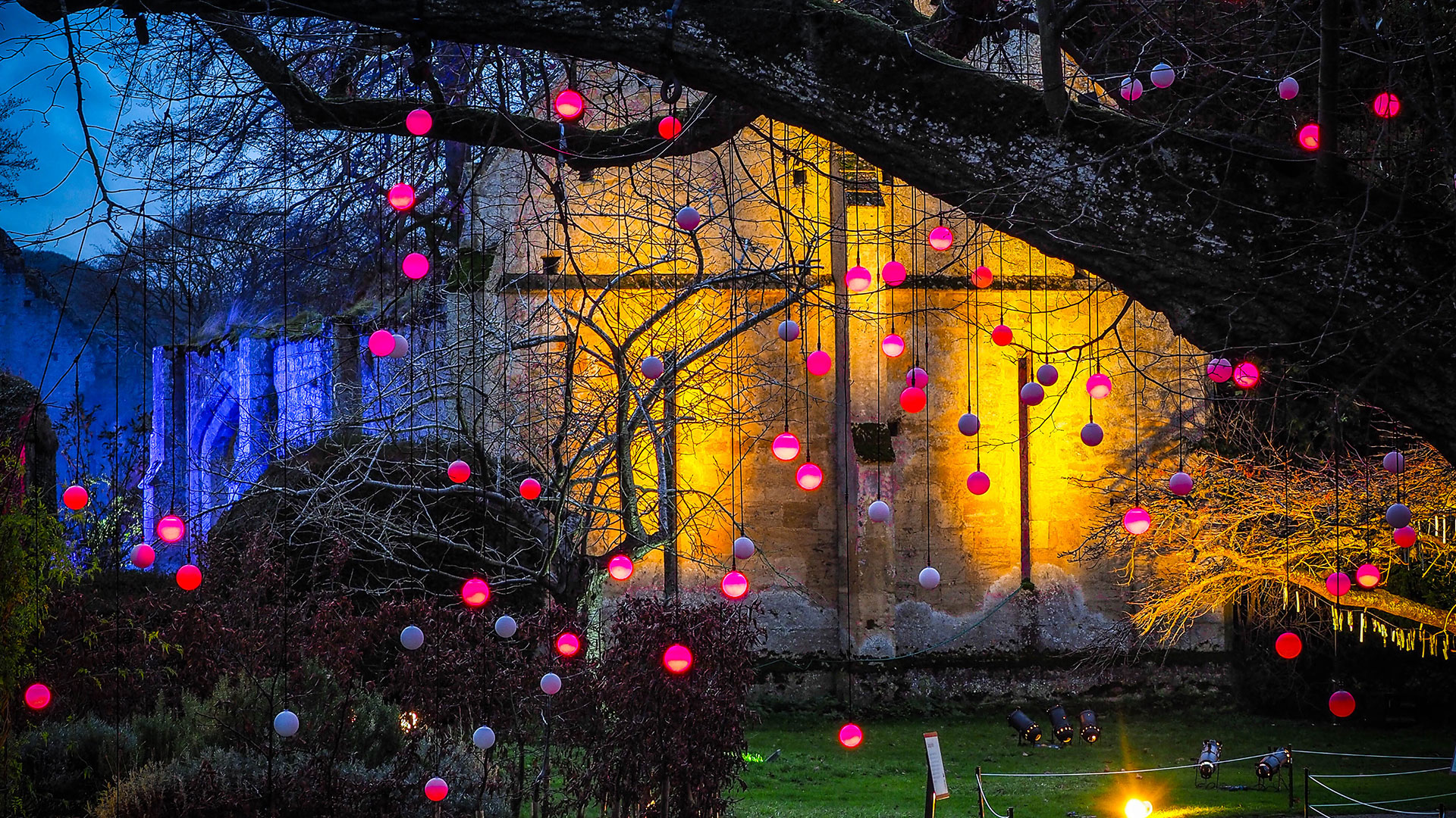 Spectacle-Of-Light-Twinkly-Lights.jpg