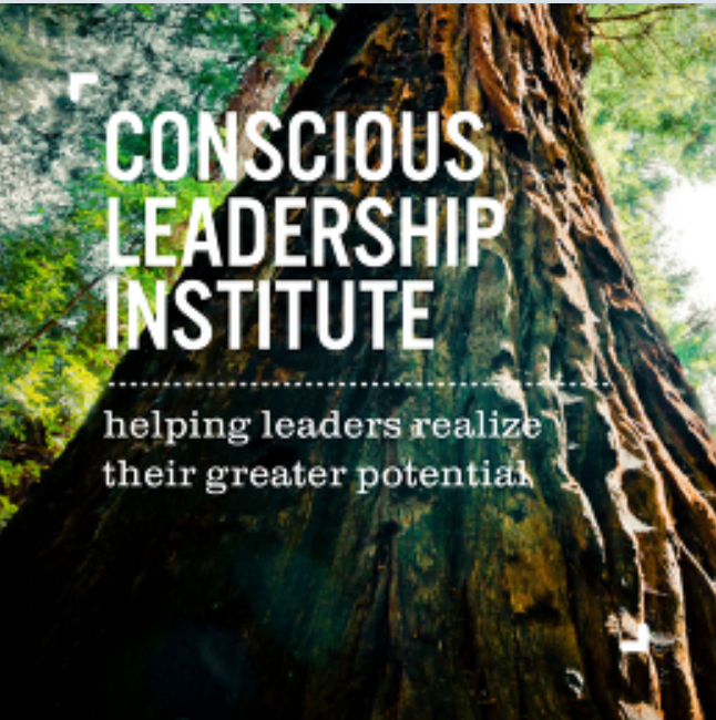 The Conscious Leadership Institute creates empowering learning journeys for executives to lead with awareness of one's self, the world, and one's purpose within it. Our goal is to assist leaders to address modern challenges with new and sustainable solutions. We work with leaders and their organizations to kindle their source of energy and passion, articulate their sense of purpose, build agility, contribute to a sustainable future, and develop a path in realization of their greater potential.