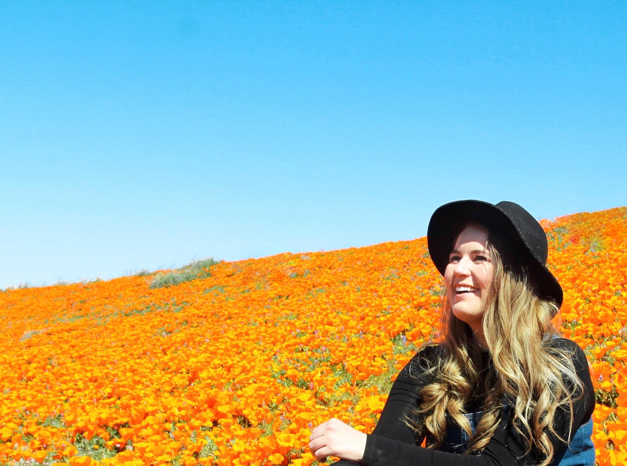 Carolyn California Poppy Field