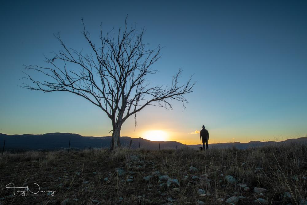 Man, dog, sunrise
