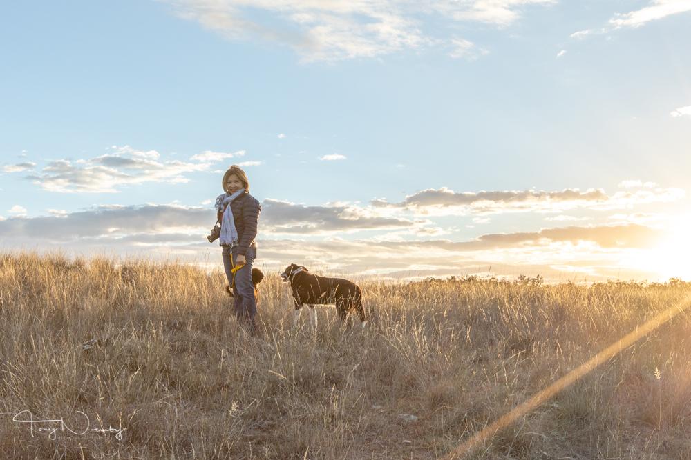 Capertee Valley Truc dog sunset.jpg