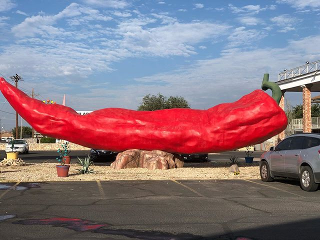 LOOK AT THIS GIGANTIC PEPPER! And then come out to @axelradhouston for a fantabulous night of music, booze and sweet memories for @rexhudson's lp release party with budz @birthdayclubband (DJ set) and @cameracult (non DJ set). It's gonna be a great (free) show!