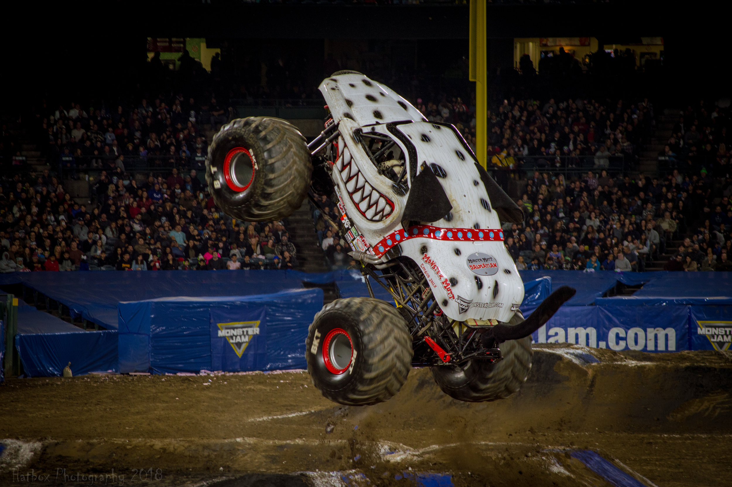 Monster Mutt Dalmatian is another fan favorite and for good reason. Candice Jolly who usually drives at Angel Stadium is one of the best drivers on the circuit. She is not afraid to go fast or go big during freestyle. She is also one of the kindest and fan friendliest athletes in all of sports.