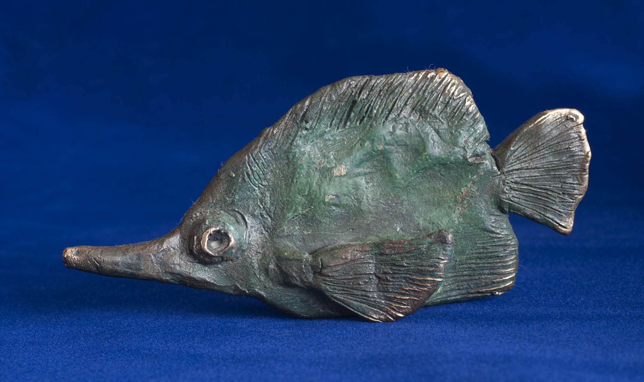 PG_bronze_Long-nosed_Butterfly-fish_20100709_1.jpg