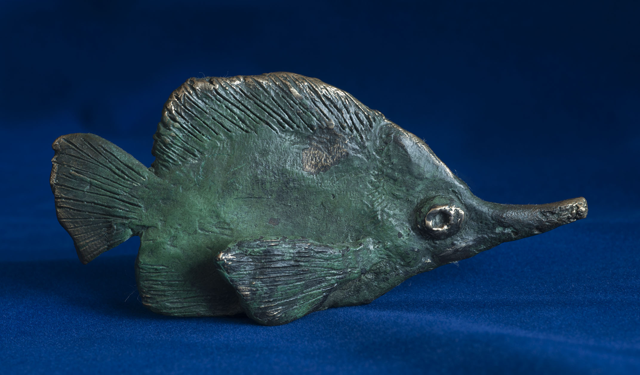 PG_bronze_Long-nosed_Butterfly-fish_20100709_2.jpg