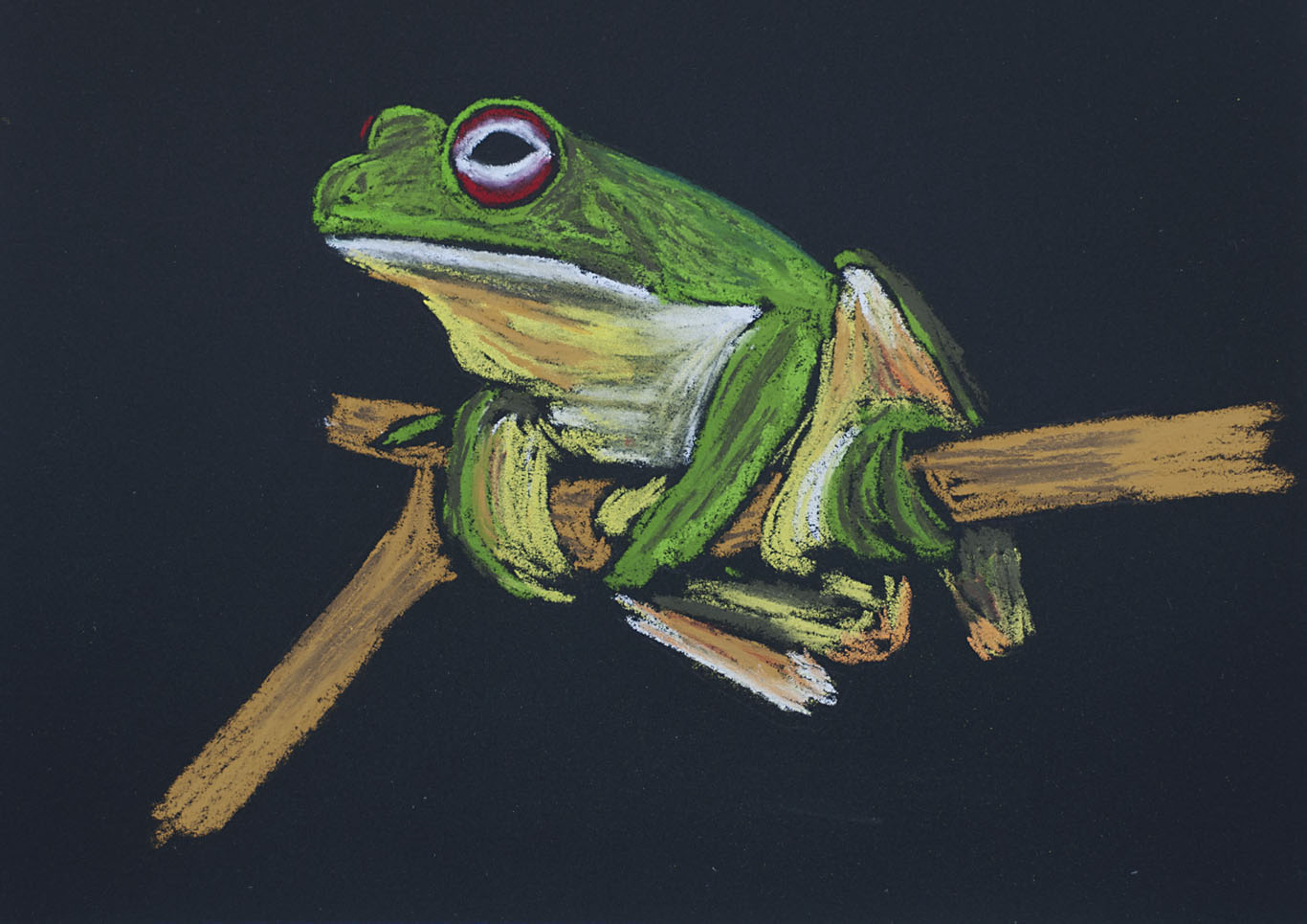 PG_Red-eyed_Tree-frog_Greenhill_Exhibition_2007.jpg