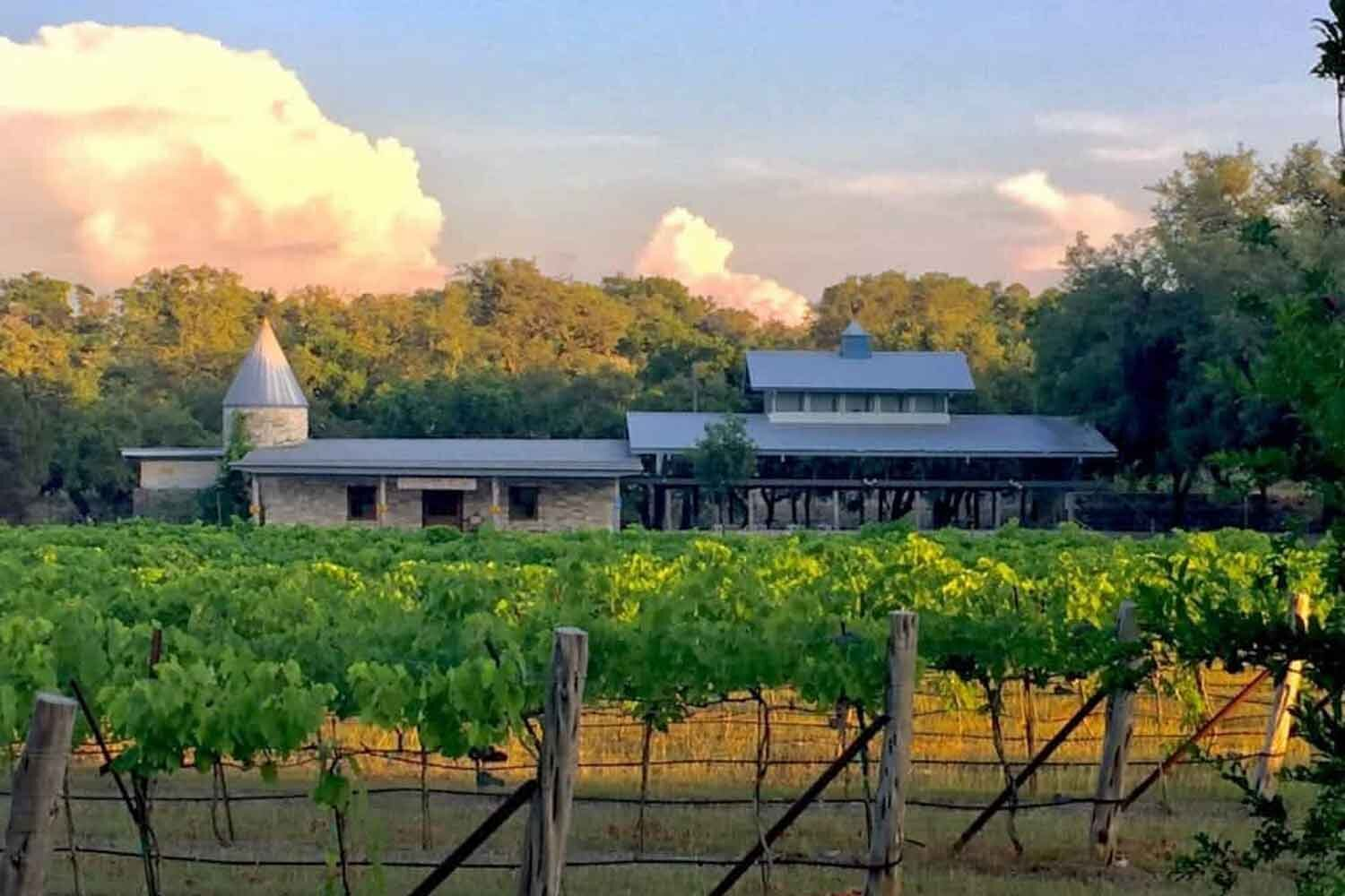 texas_hill_country_wineries_1500.jpg