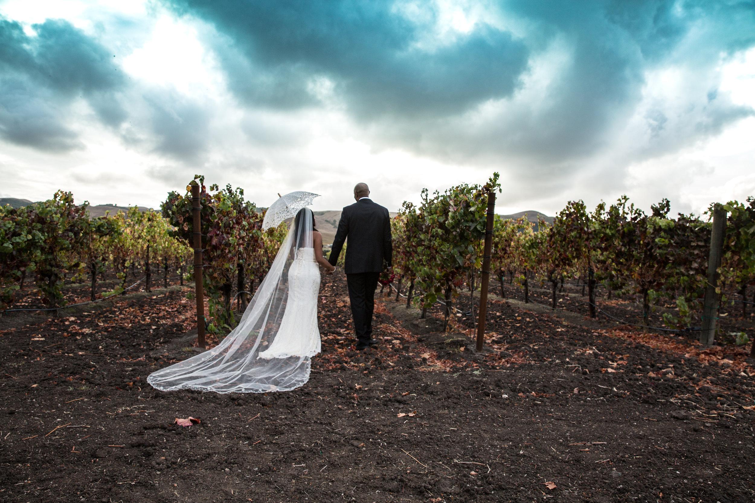 Toshi Tazawa Photography San Francisco CA Destination Wedding Photographer-142.jpg