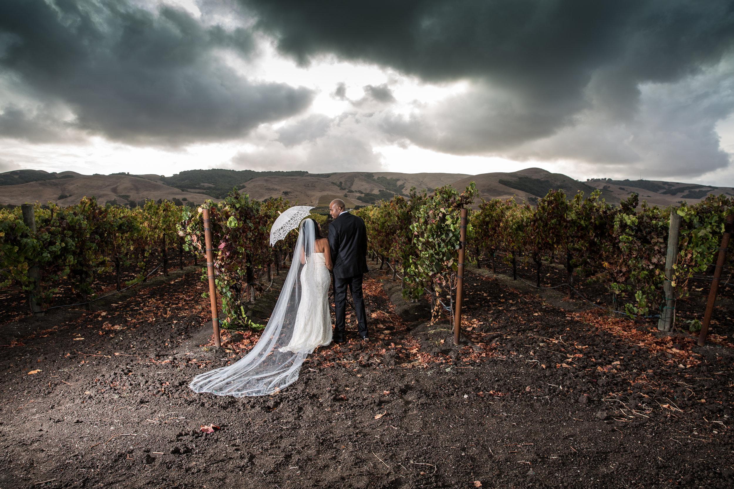 Toshi Tazawa Photography San Francisco CA Destination Wedding Photographer-143.jpg