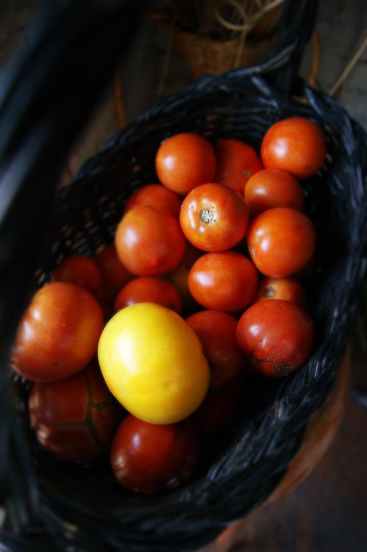 SmTomatoesBasketV01Flat01DSC05065.jpg