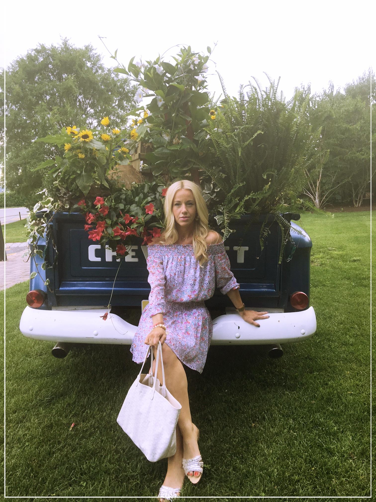 Shoshanna Rita Dress ,  Goyard Bag ,  Zara Slides