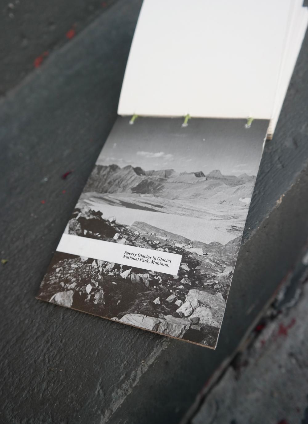 inside_collagebook.jpg