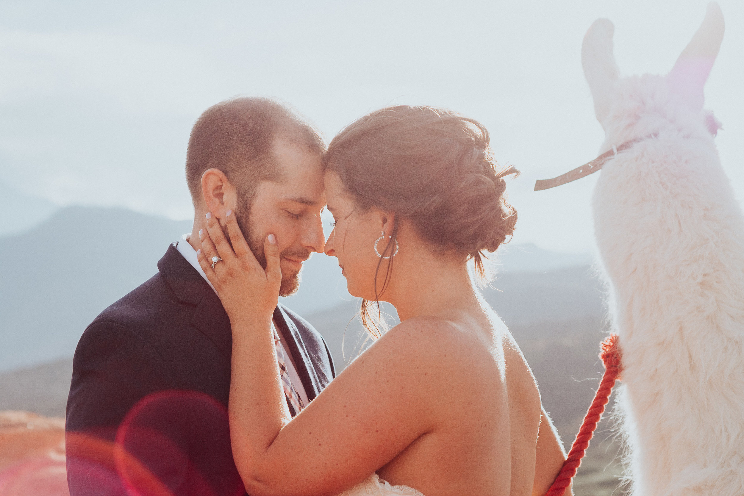 Falling in love with wedding photography -