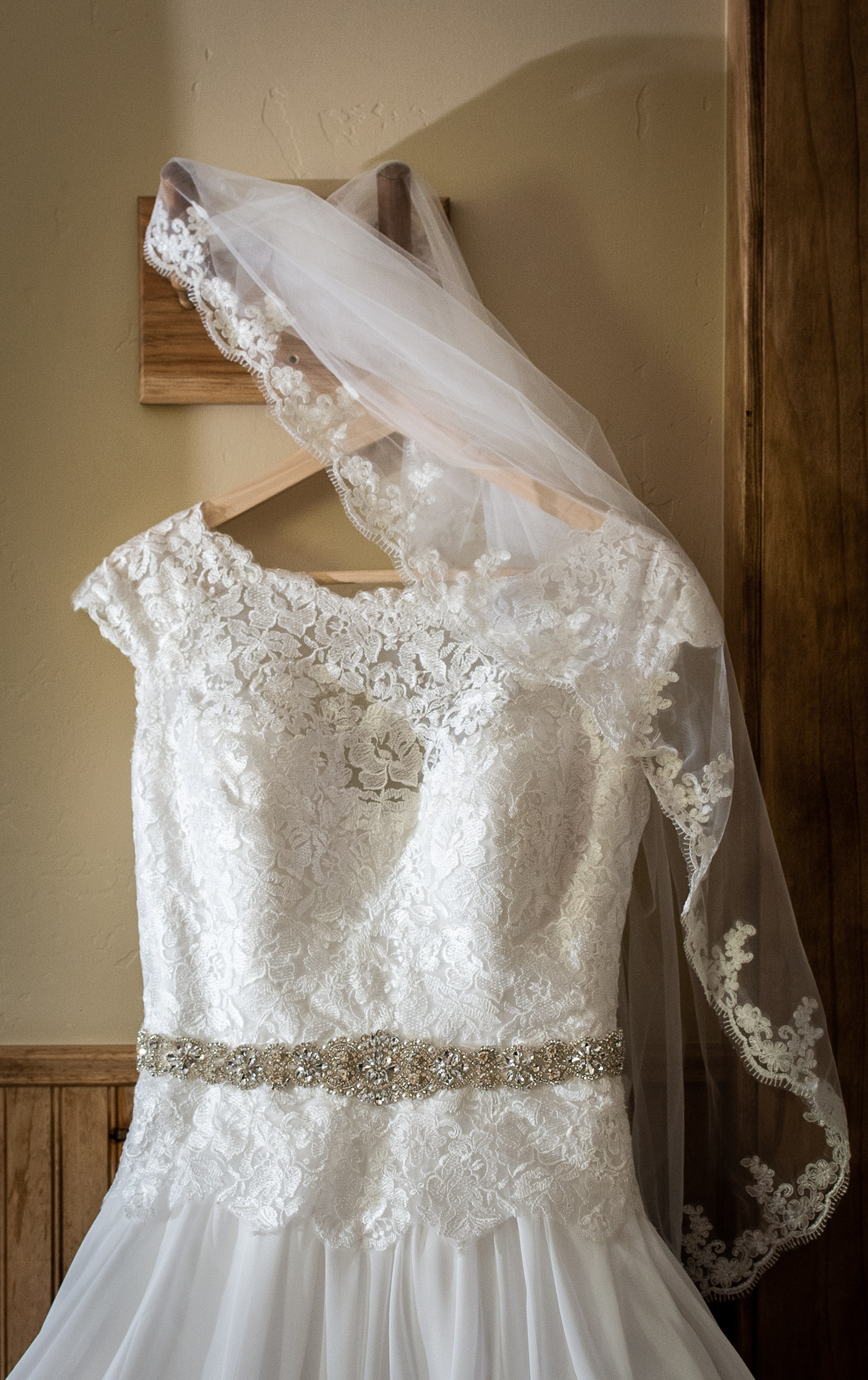 Wedding Dress and Vail Picture