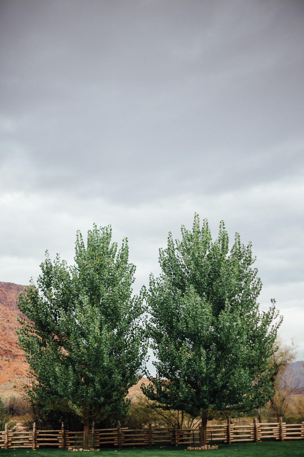 Wedding ceremony detail landscape Red Cliffs Lodge Destination Moab Utah