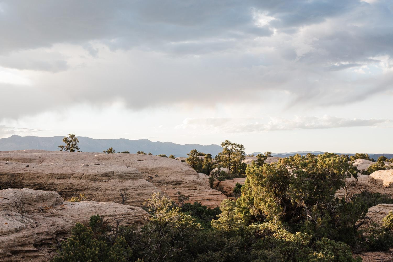 KyleLovesTori-Zion-National-Park-Adventure-Bridals-18.jpg