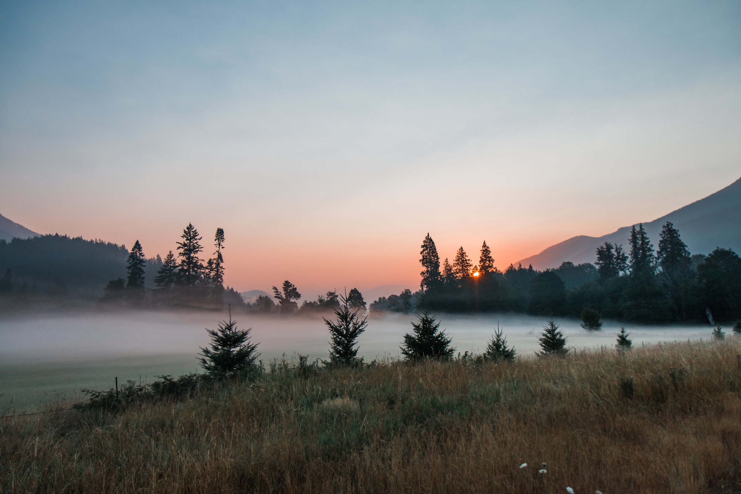 Washington Mount Rainier Sunrise Bridals