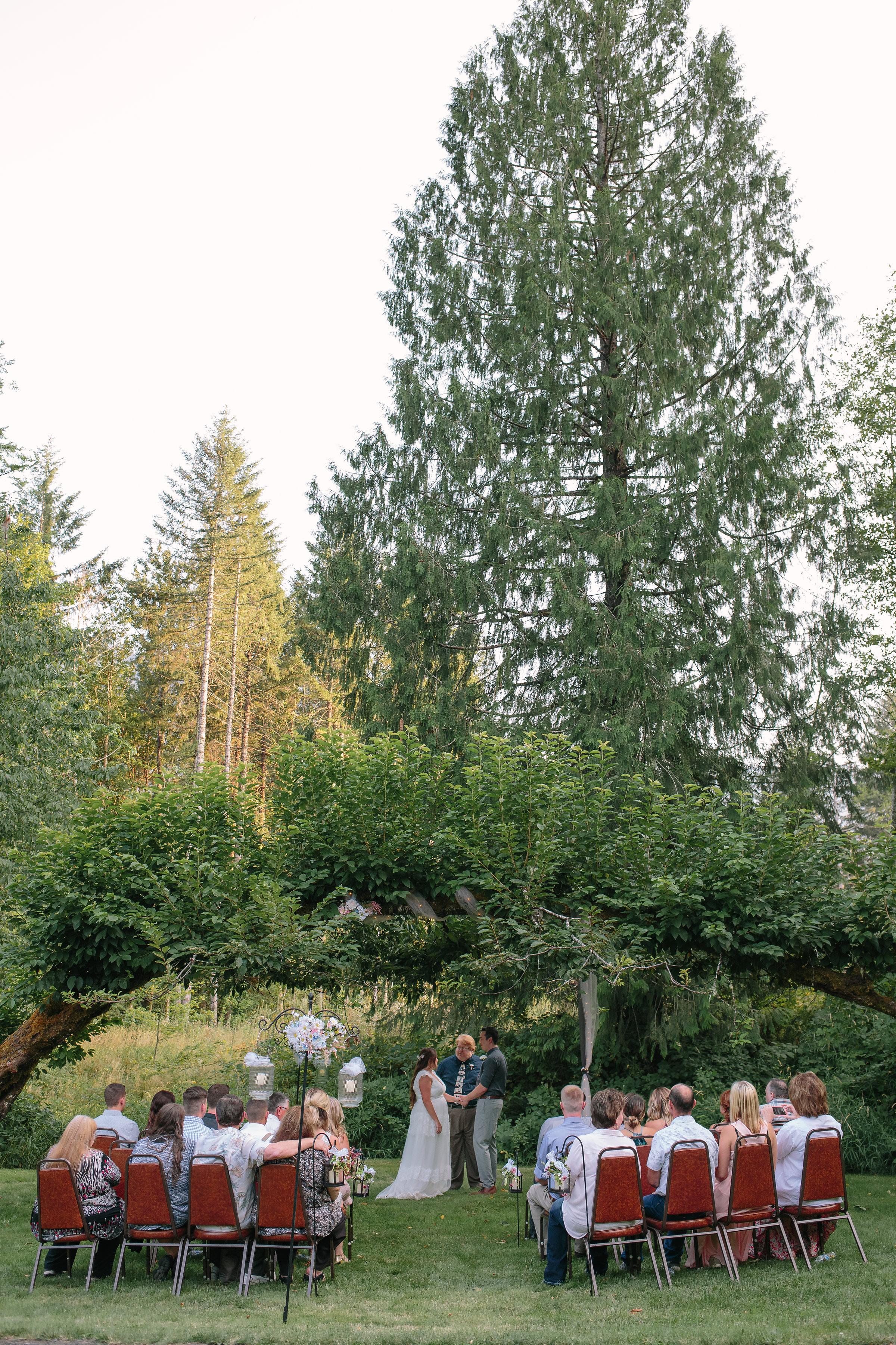 Mount Rainier Washington Intimate Ceremony