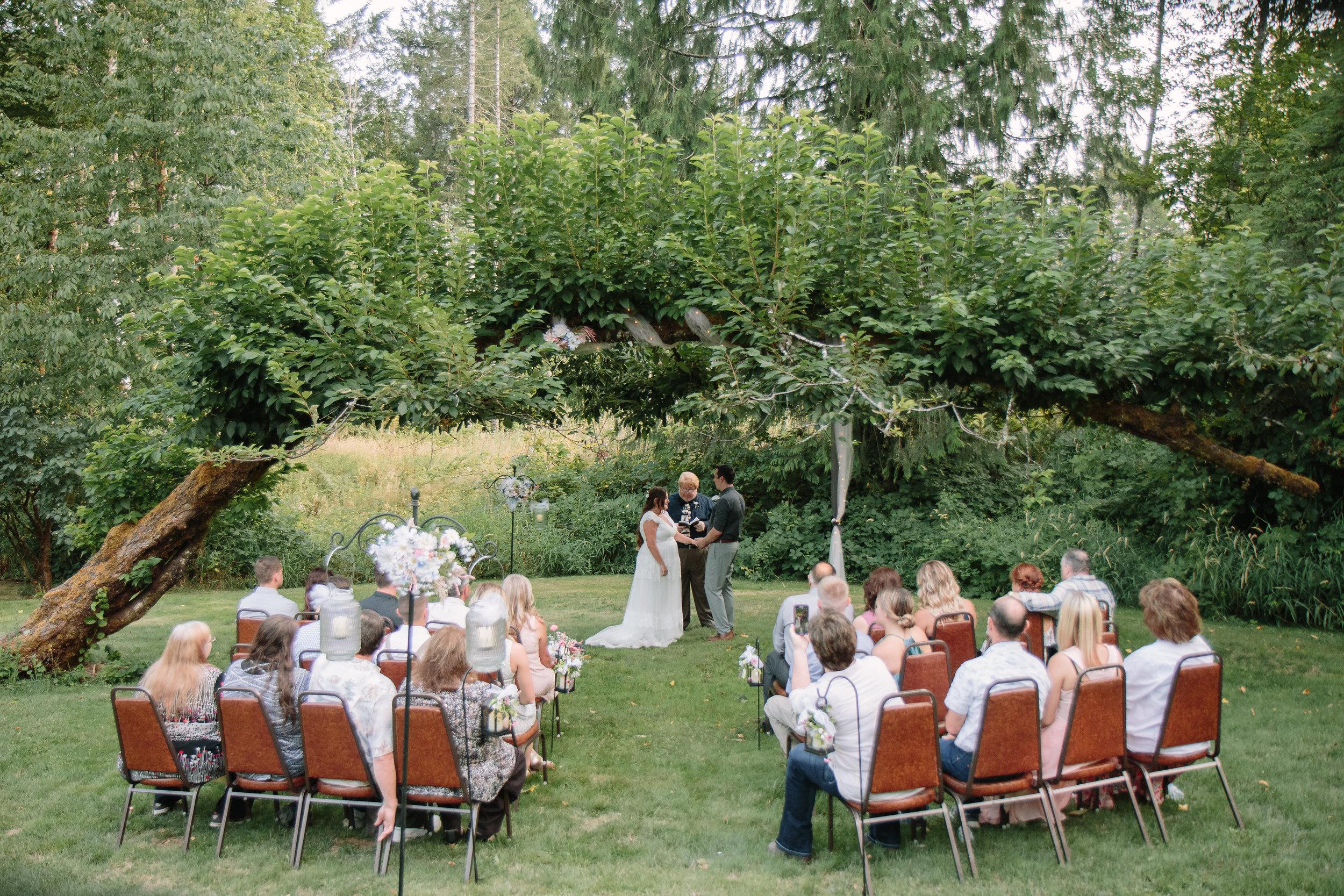 Cabin Intimate Wedding Washington Forest