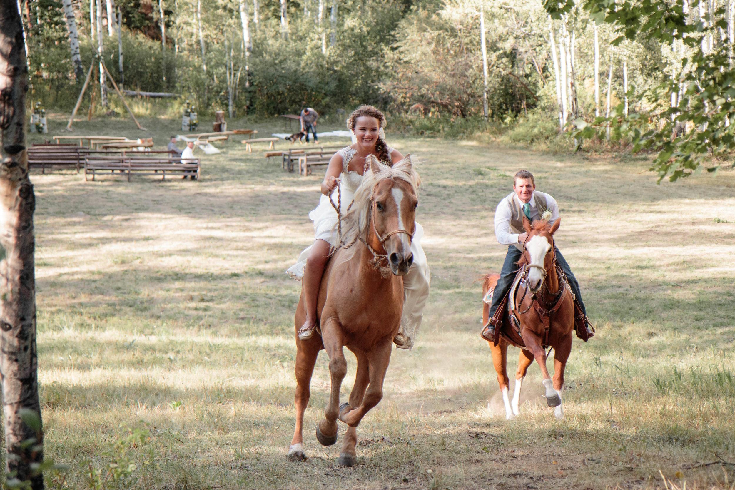 Horse Ride Bride Groom Mountain Race